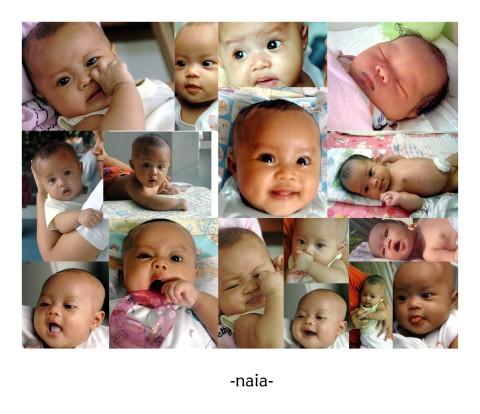 Kolase Naia